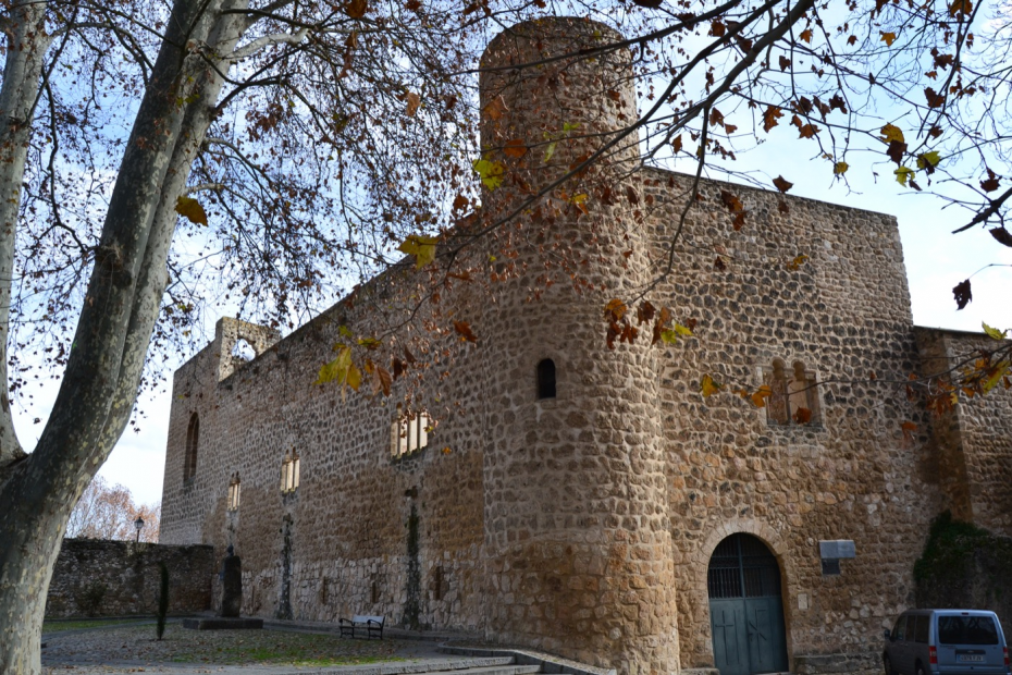 Rehabilitacion de castillo